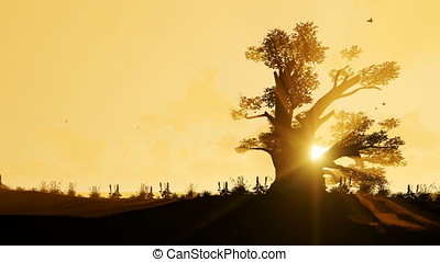 African Baobab and Birds flying against beautiful morning Sun, zoom out