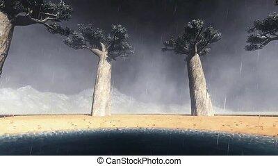 African baobabs