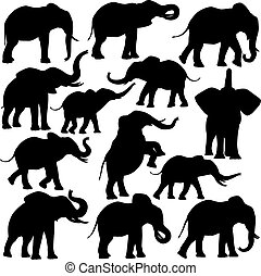 African elephants - Set of editable vector silhouettes of...