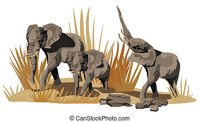 African Elephants on Savannah - Illustration of African...