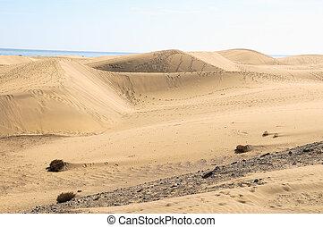 Sand Dune Desert - African European Sand Dune Desert ...