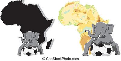 african football -  elephant