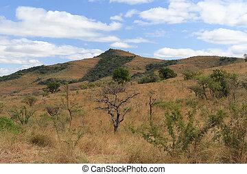 African landscape in the dry season. Hluhluwe/Imfolozi...