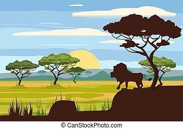 African landscape, lion, savannah, sunset, vector, illustration, cartoon style, isolated