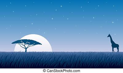 Cartoon animation of African savanna at night.