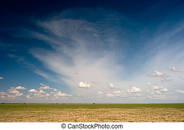 African Plain - A view over an African plain in Kenya. ...