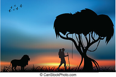 African savanna and tourist - African savanna with lion and...