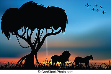 African savanna - Africa savanna with lion and lioness at...
