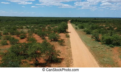 African savannah landscape with sandy road to horizon. Aerial view. Vanishing point.