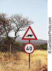 African sign