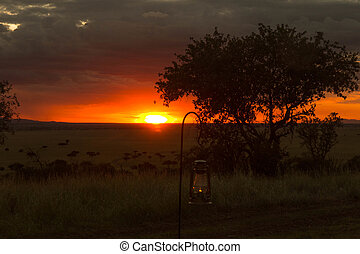 African Sunset - Oil Lamp in front of African Orange Sunset