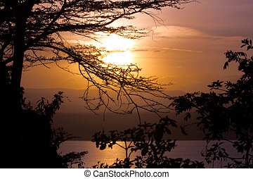 African Sunset over Lake - Trees, Bushes and Lake in Front...