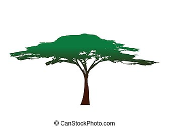 African tree icon, acacia tree silhouette, colorful vector isolated