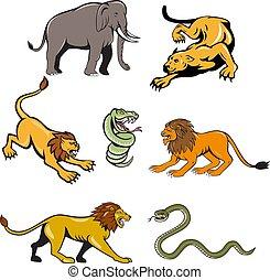 african-wildlife-cartoon-set