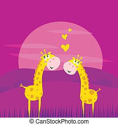 africano, amore, due, giallo, giraffe