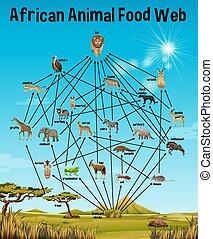 africano, cibo, educazione, web, animale