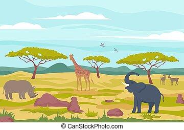 africano, composição, fauna, selvagem