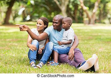 africano, familia , el sentarse en el parque