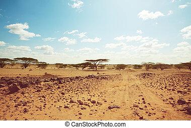 africano, spedizione