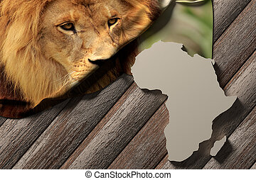3d rendering of an africa map and a picture of a lion