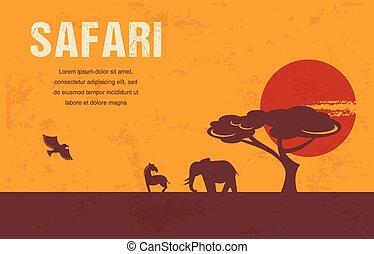 afrika, bakgrund, infographics, -