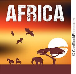 afrika, háttér, infographics, -