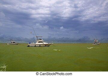 afrika, ocean, saly, senegal, grön, båt