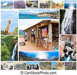 afrikaan, wilde dieren, collage, fauna, verscheidenheid, in, kruger, park, natuurlijke , themed, verzameling, achtergrond, mooi, natuur, van, zuid-afrika, fauna, avontuur, en, reizen
