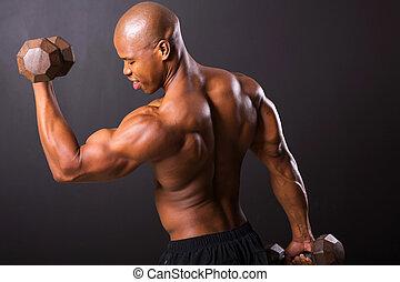 afrikaans mannetje, bodybuilder