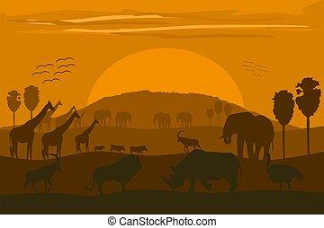 afrikanisch, tiere, landschaftsbild, wild, kilimanjaro.