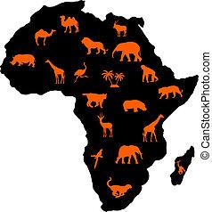 afrikansk, djuren