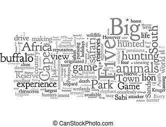 afrikas, begriff, hintergrund, fünf, text, wordcloud, tiere,...