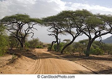 afrikas, landschaftsbild, 005