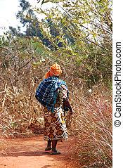 afrikas, tansania, -, landschaftsbild, landwirtschaftlich