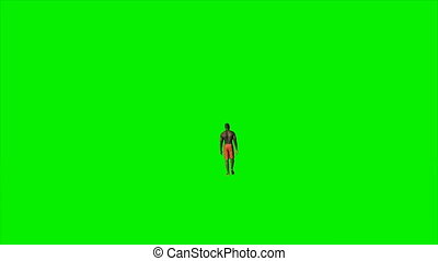 Afro american in shorts walking against green screen, Luma...