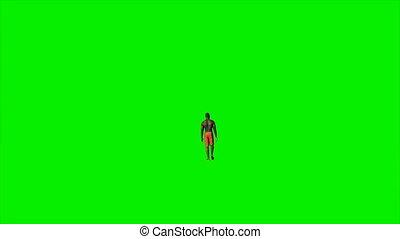 Afro american in shorts walking against green screen, Luma...
