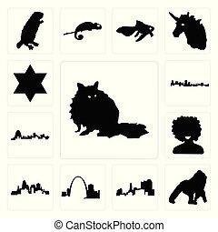 afro, contour, ensemble, étoile, gorille, icônes, david, raton laveur, missouri, noir, maryland, ohio