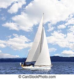 afsejlingen, vind, båd