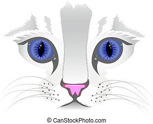 afsluiten, kat, op, gezicht