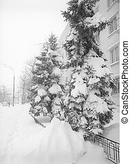 After snowstorm in the city.