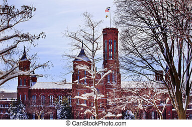 After the Snow Smithsonian Castle Through Snowy Trees...
