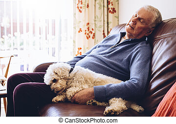 Afternoon Nap with the Dog - Senior man asleep at home on ...