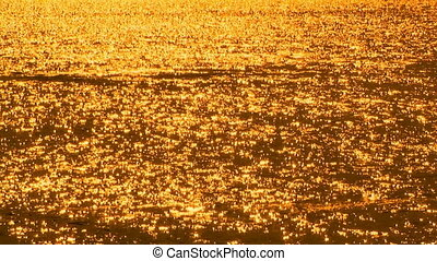 Afternoon rowing - Golden sunset on the Willamette river as...