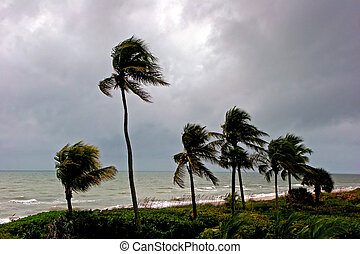 Afternoon Storm High Winds Shoreline Sanibel Florida