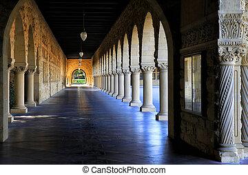 afternoon., tarde, stanford, california, universidad