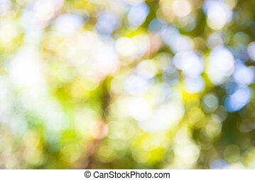 afuera, árbol., tiro, amplie la visión el enfoque