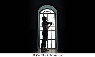 Against the background of a window girl plays the violin ....