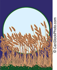 Against the Moon - A blue full moon over a field of waving...