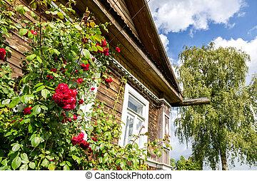 agancsrózsák, piros virág, fából való, épülethomlokzat, épület