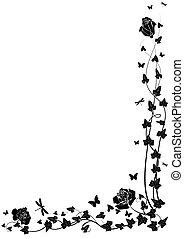 agancsrózsák, repkény